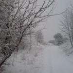 Zima w Żerdnie 2009